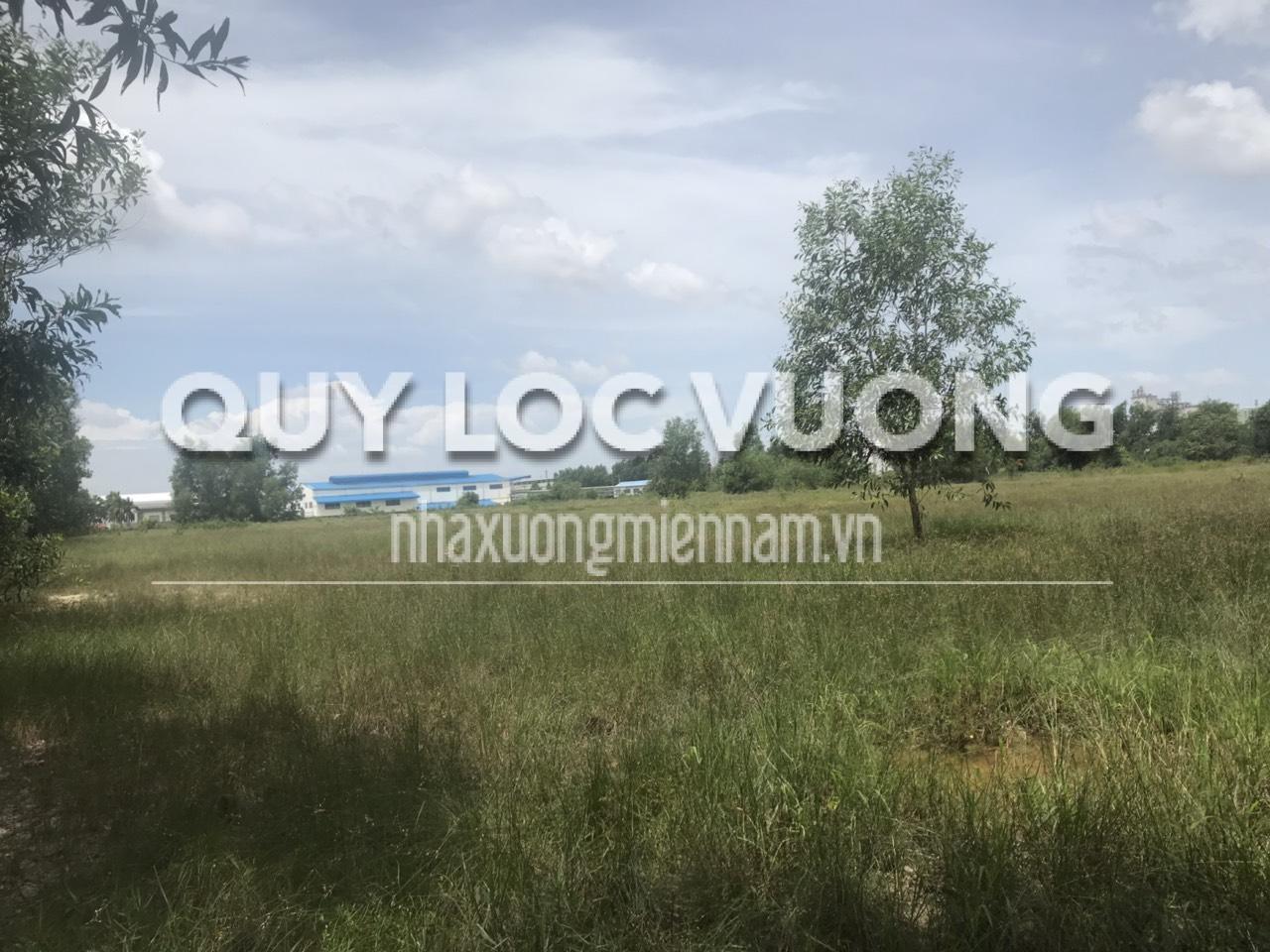 Cho thuê đất ở xã Hố Nai huyện Trảng Bom diện tích 10.000m2