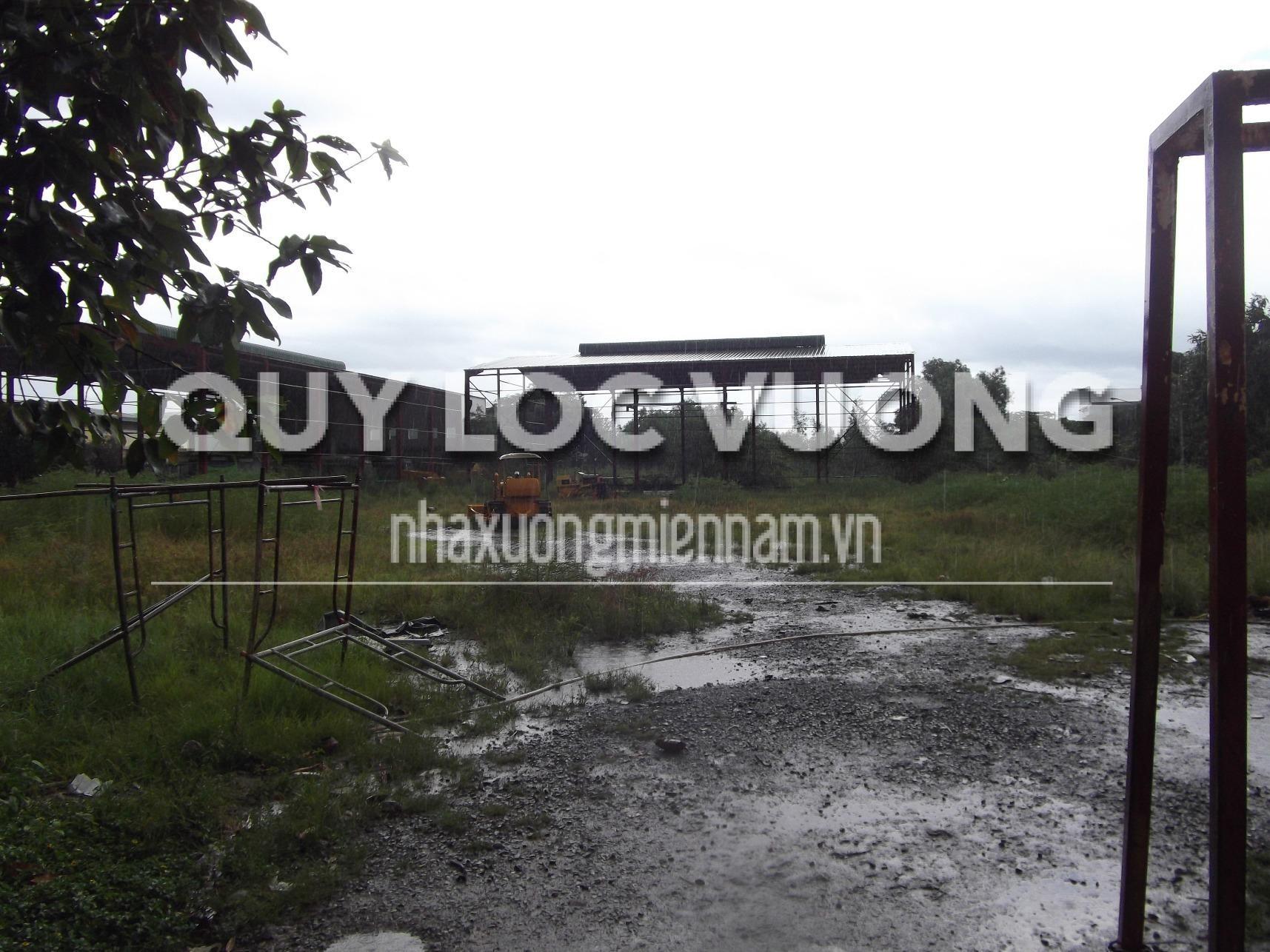 Cho thuê đất trống làm bãi đậu xe mặt tiền đường Mỹ Phước Tân Vạn, Bình Dương