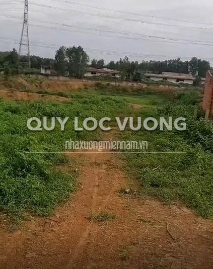 Bán đất trống trong cụm công nghiệp Tân An huyện Vĩnh Cửu, 20.000m2