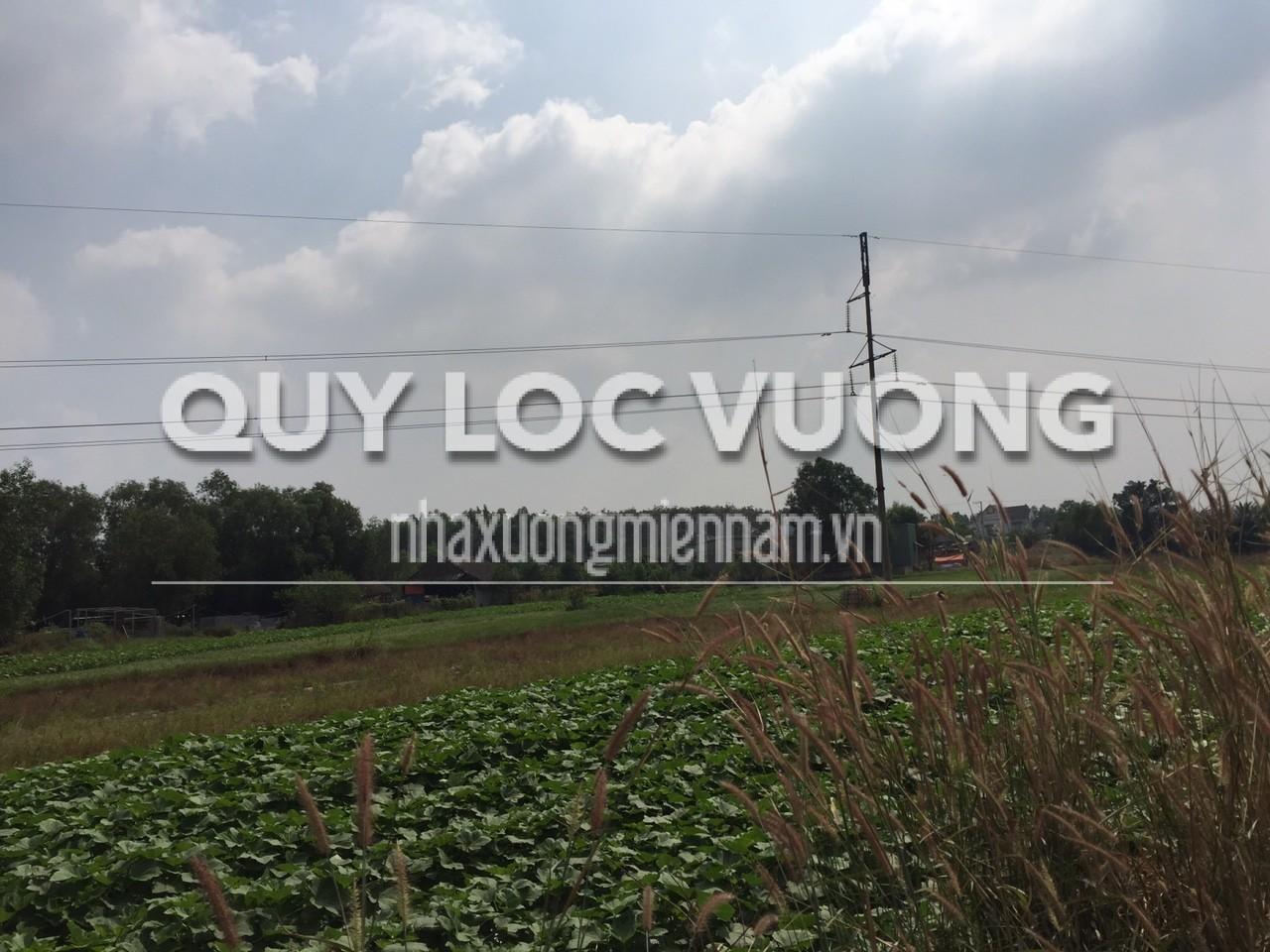 Bán đất trống xã Tân Hiệp huyện Bắc Tân Uyên Bình Dương rộng 200.000m2