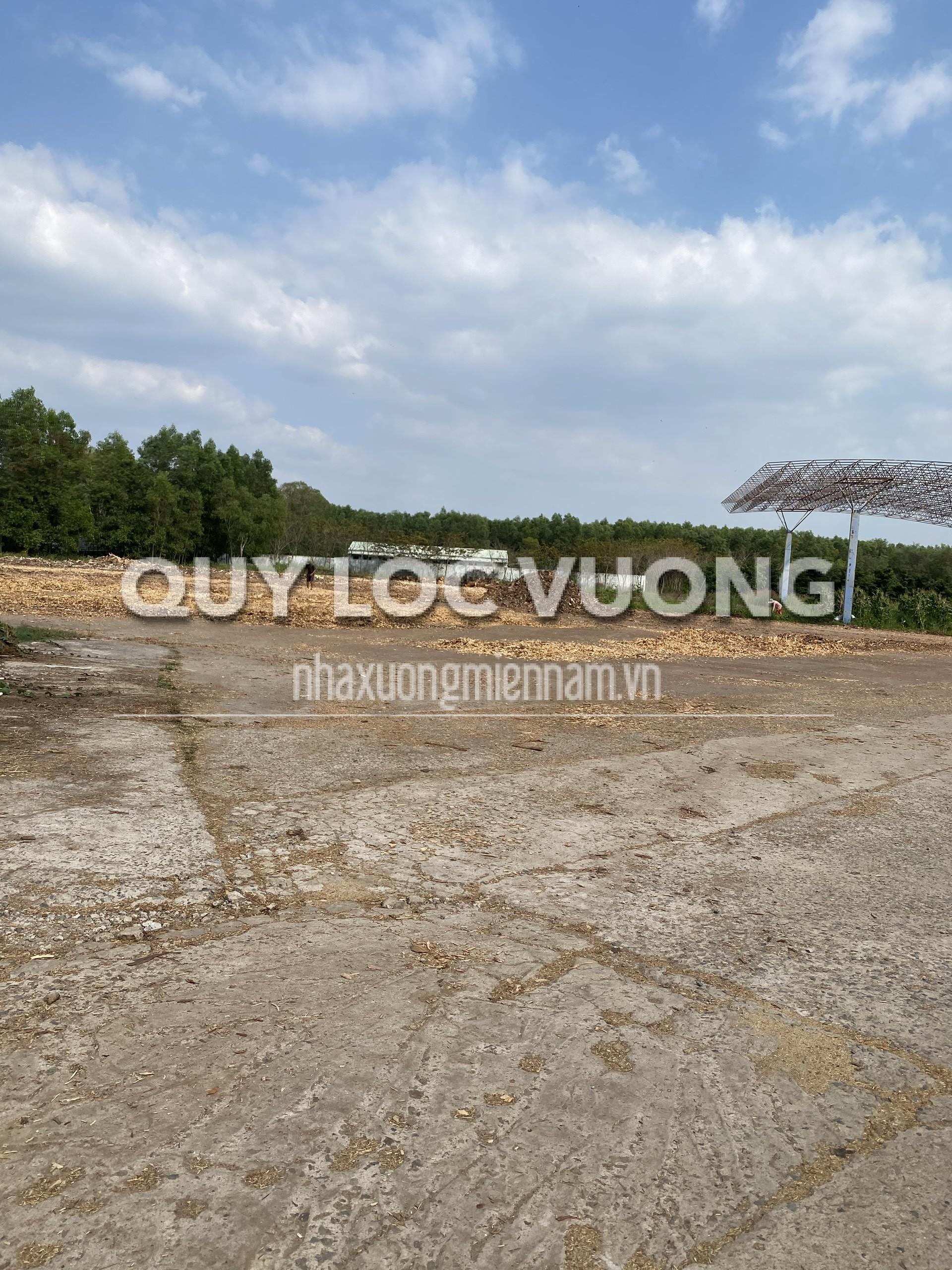 Bán đất và xưởng ấp 7 xã Phước Bình huyện Long Thành Đồng Nai, 60.000m2