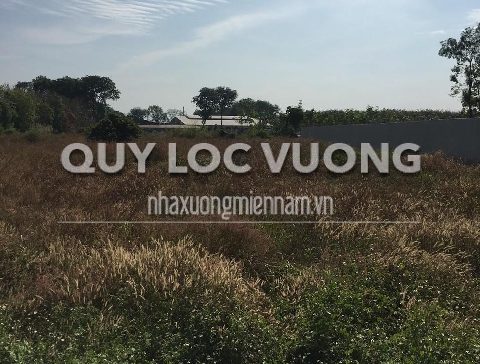 Bán lô đất trống rộng 11,5ha phường Phú Tân thành phố Thủ Dầu Một Bình Dương