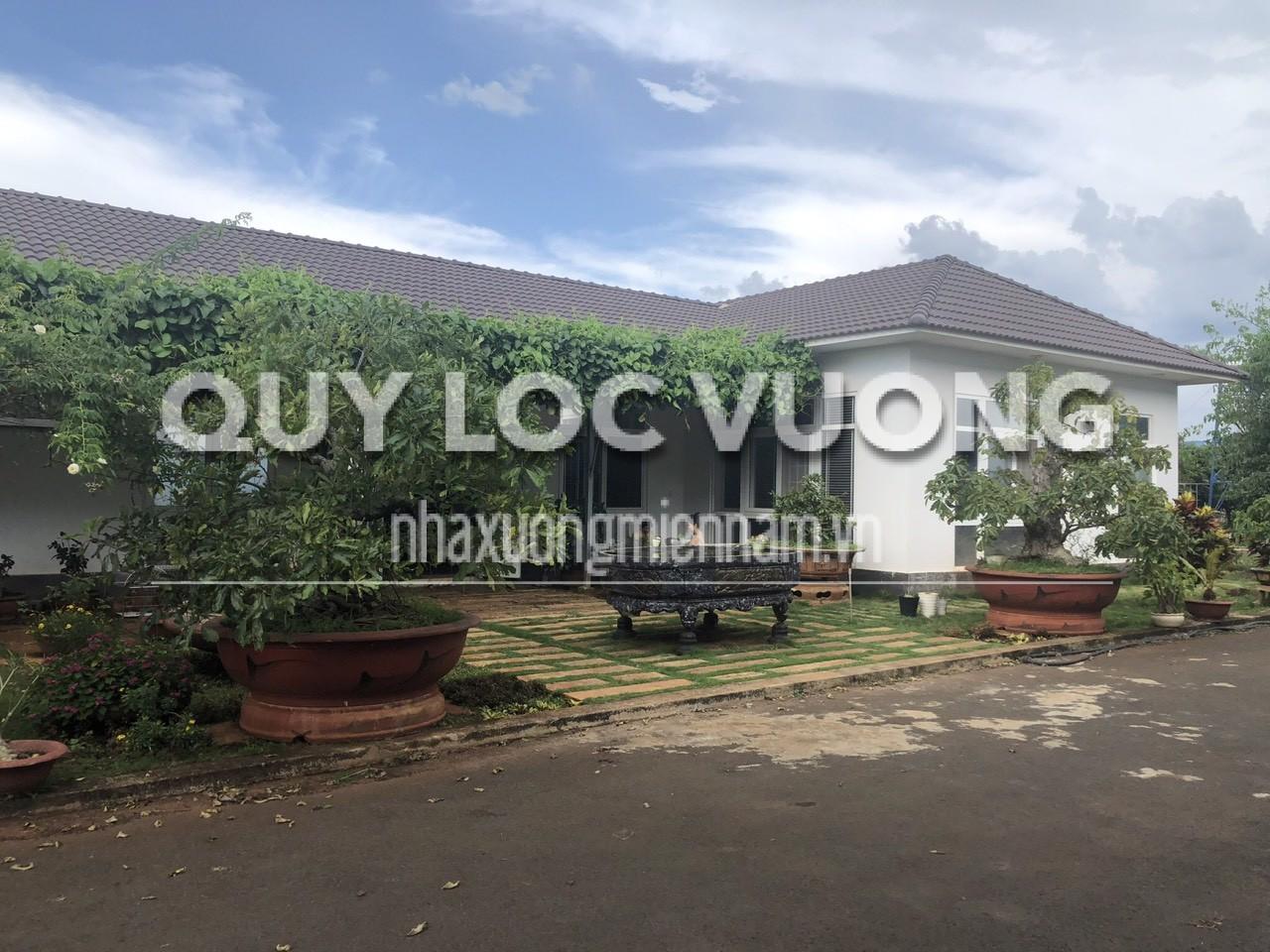 Cho thuê hoặc bán xưởng trong CCN Tân An thành phố Buôn Ma Thuột giá rẻ