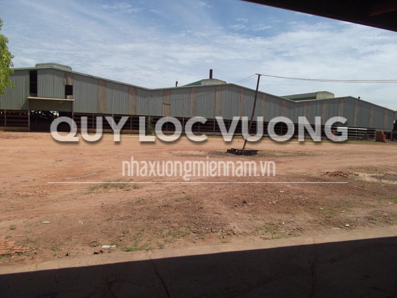 Cho thuê xưởng nằm gần cảng Thạnh Phước Tân Uyên Bình Dương, 20.000m2